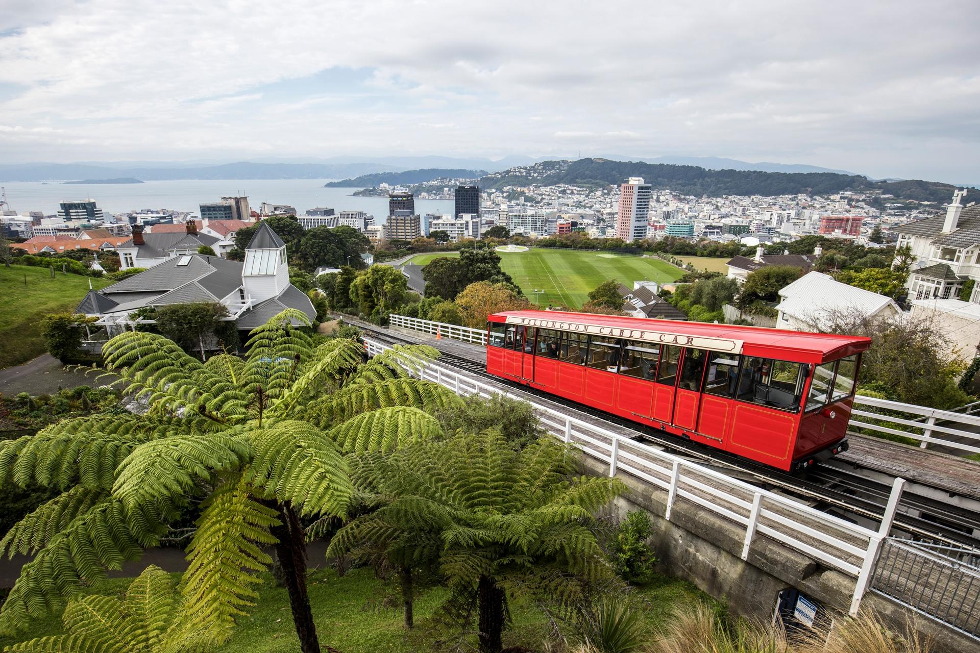 115-Wellington-City-Graeme-Murray