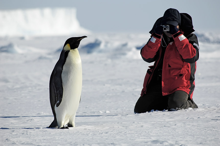 Antartica-Holiday-Packages-Fine-Travel