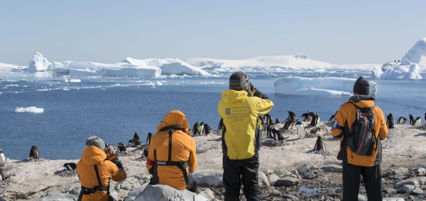 Expedition Cruises: Not Just for the Intrepid Traveller