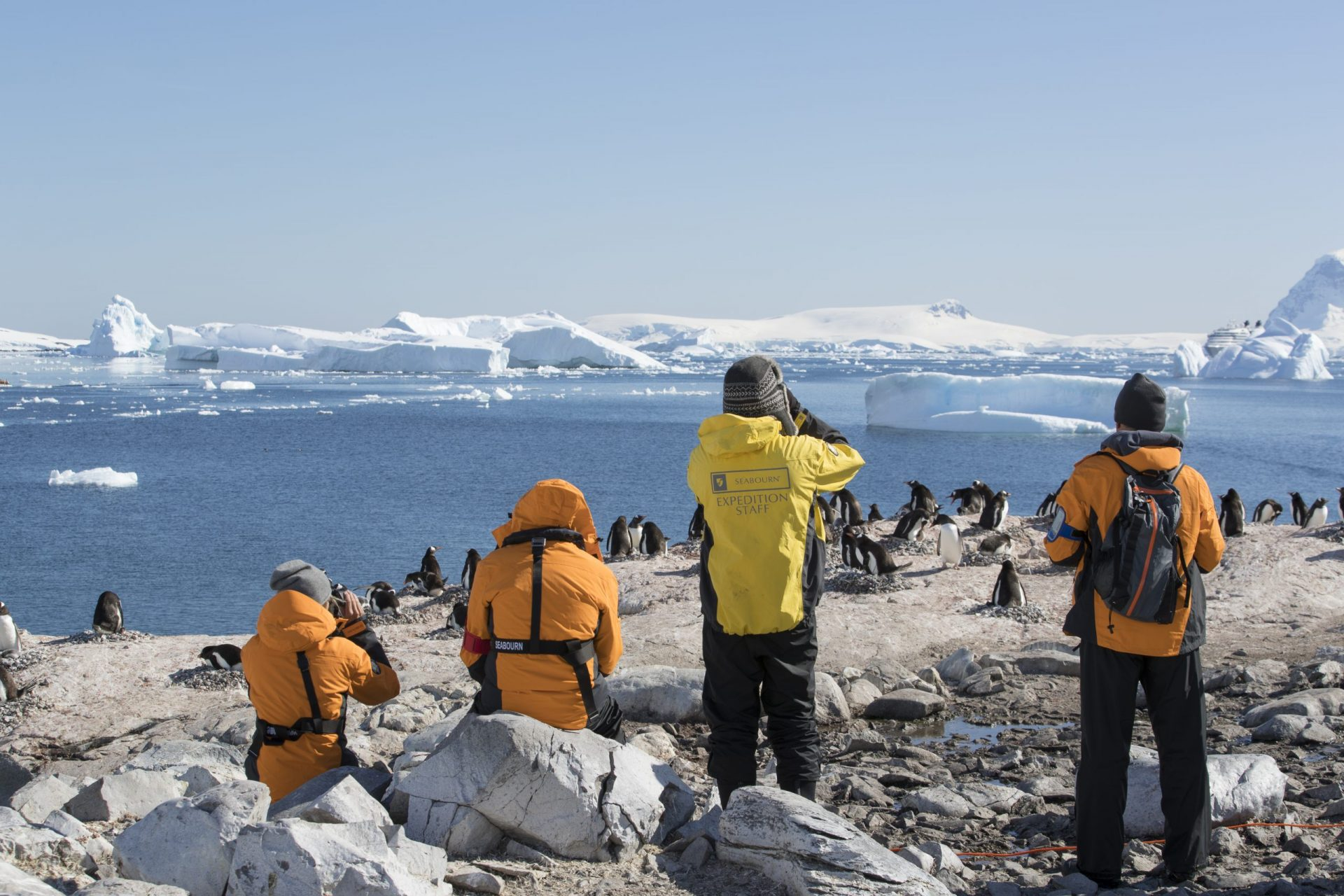 SBN-RSAY17-Onshore-Seabourn Guests with Expedition Staff-Cuverville Island-Antarctica