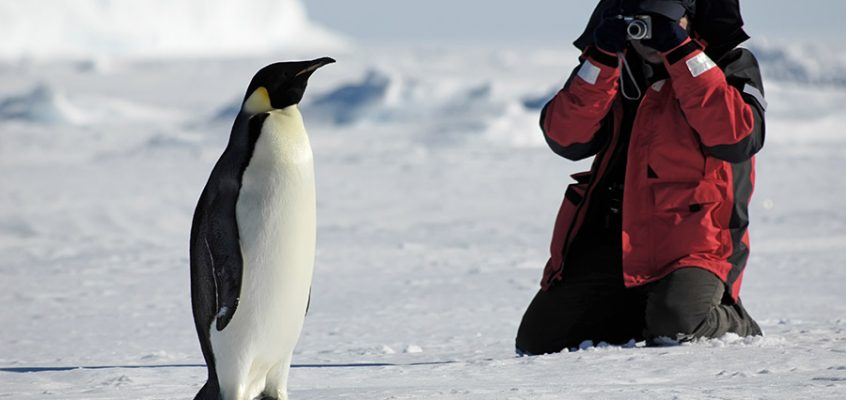 When is the Best Time of Year to go to Antarctica